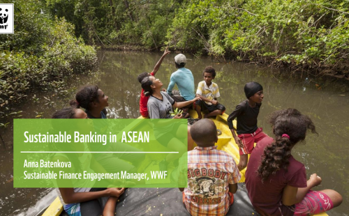 Sustainable Banking: Implementing CG & ESG to stay competitive