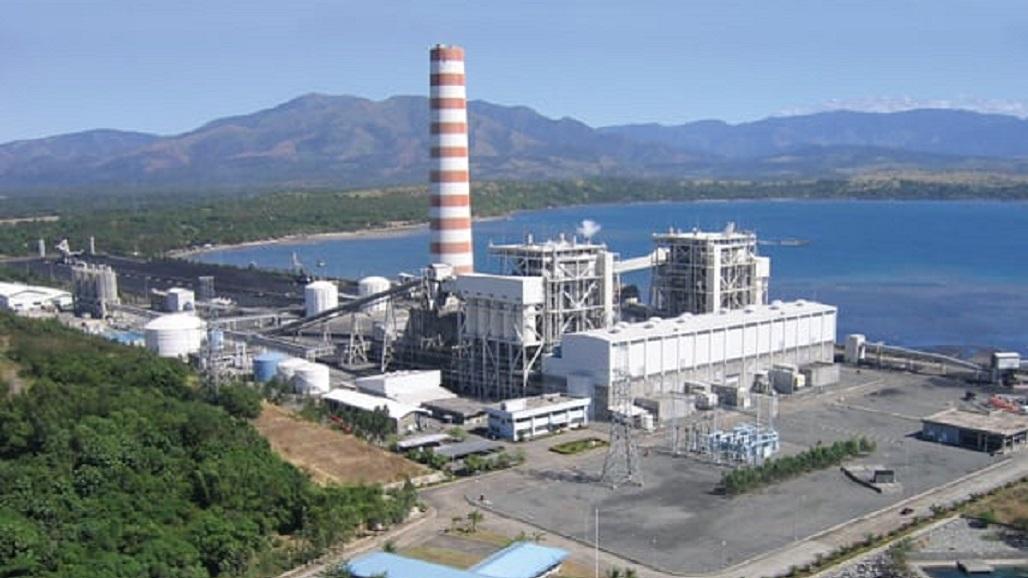 2021 0107 Manila plants 01